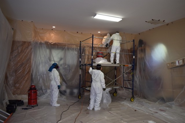 Four Frequently Asked Questions Asked About Mold!
