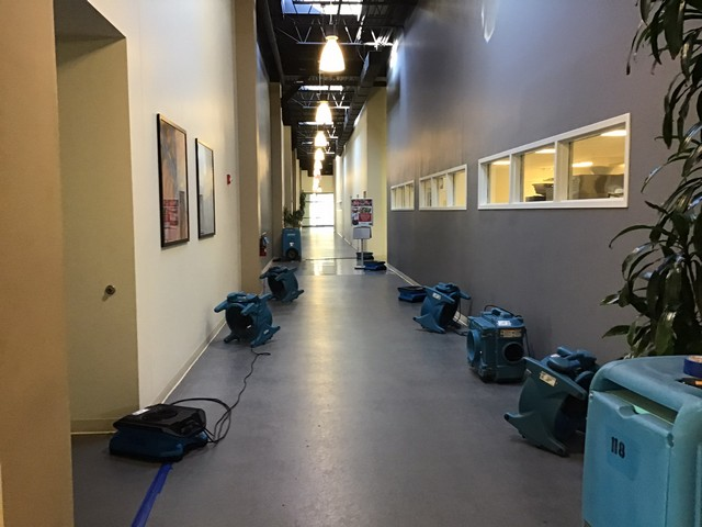 Choosing A Water Damage Restoration Company!