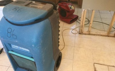 9 Tips To Prevent Mold After A Flood!