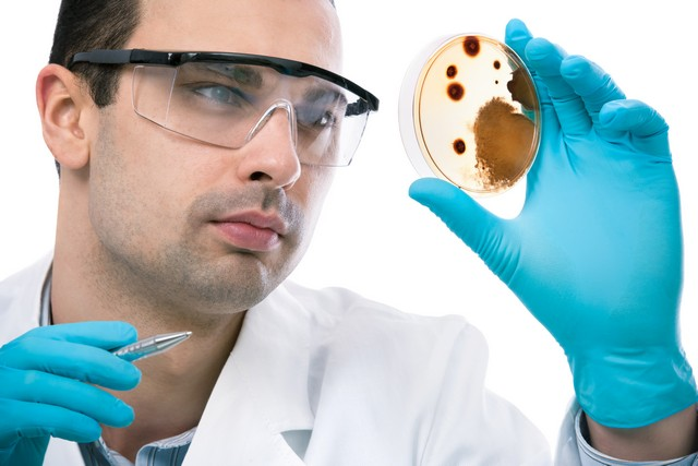 The Link Between Mold and Asthma!