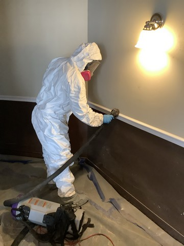 NUMBER 1 Reason Cleaning Mold Damage Is NOT a DIY Job!